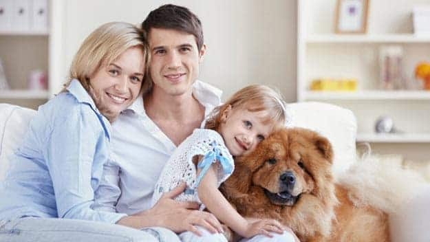Wills & Trusts dog-young-family Direct Wills Chingford Green
